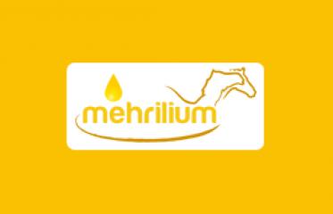 mehrlium.png
